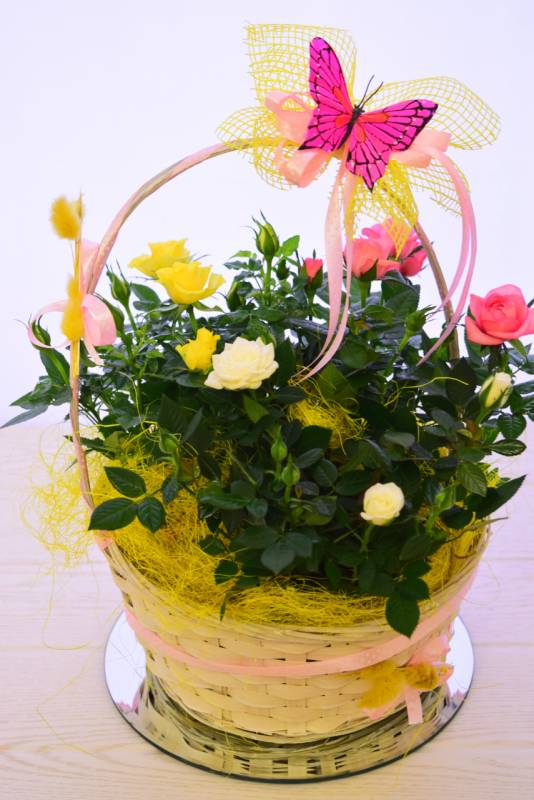 basket with roses in a pot delivery of a basket of flowers